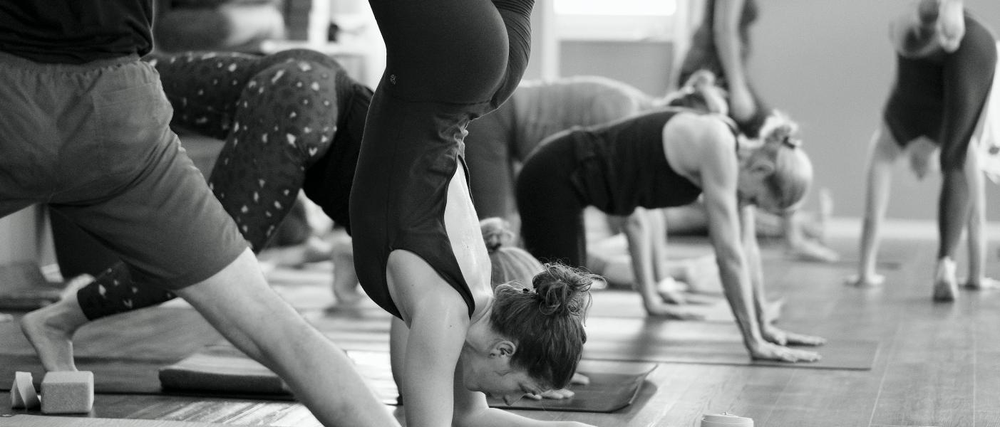 Yogalehrerausbildungen bei Yogability